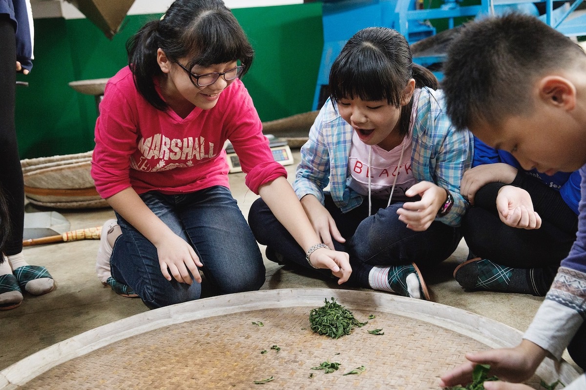 「Tian Fang Tea Store」 is the tea making family run by five generations in Sanxia doing production and sales in their own tea farm.  | Taipei Cultural experience | CAN Culture