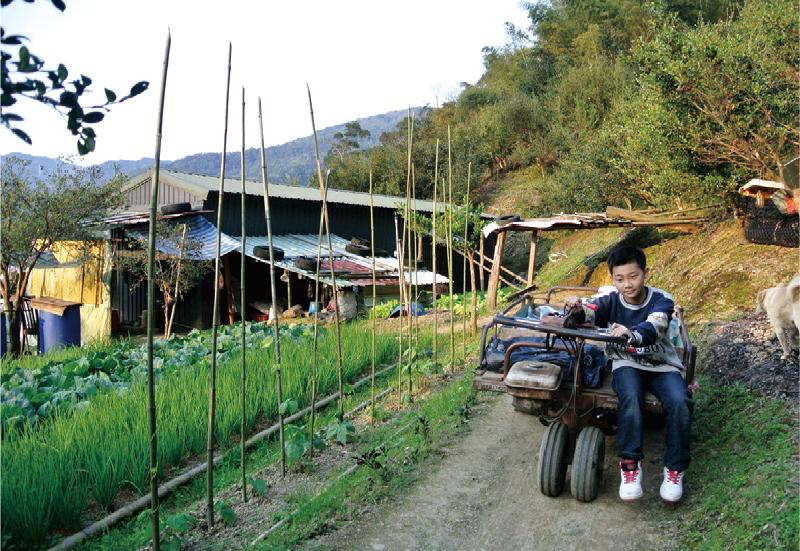 1.田裡的每項工作都必須由孩子親手完成,就連具危險性的使用割草機除草也不例外! /  2.孩子們在每年播種前都要先完成辛苦的整地工作。 / 3.從小就跟著阿祖在山上生活的小絲瓜,小小年紀就會駕駛農車分擔阿祖田裡的辛勞。   甘樂誌   甘樂文創   甘之如飴,樂在其中