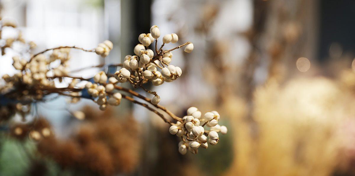 鳴之花宇|花藝手作教室