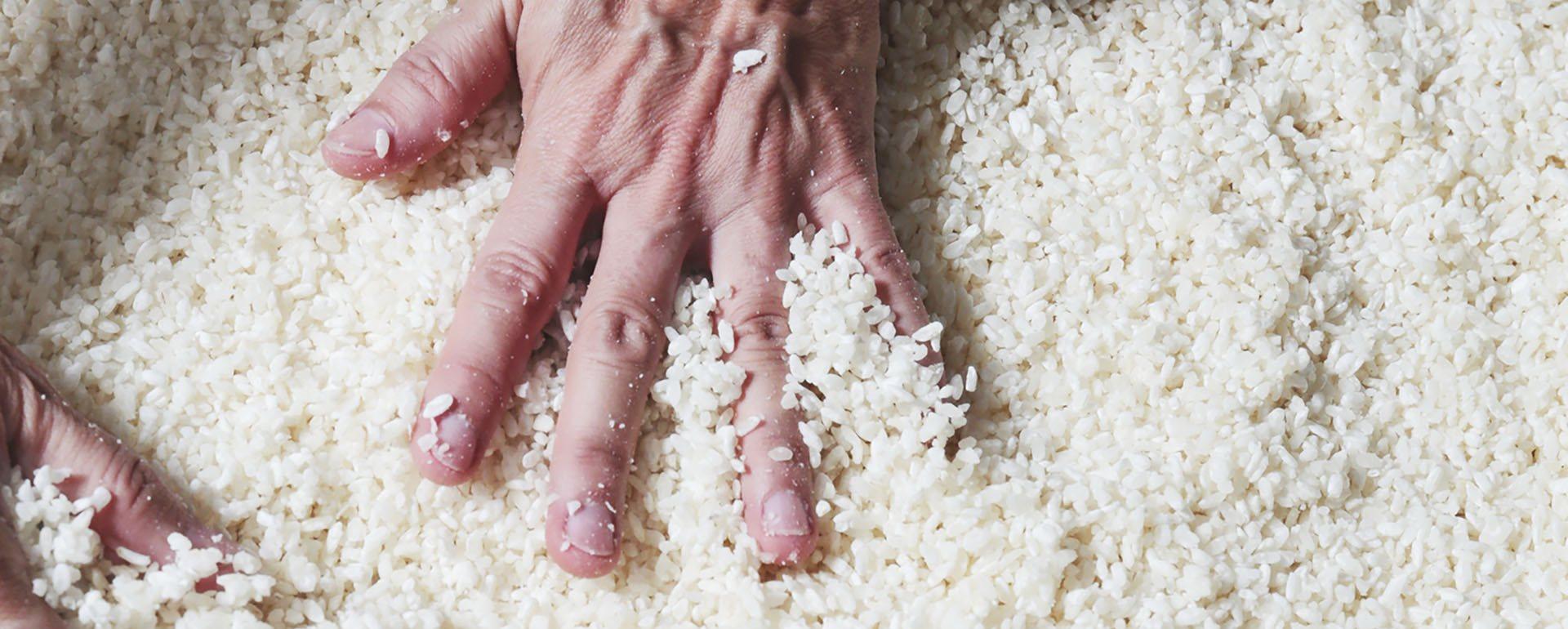還在自製米麴嗎?禾乃川國產豆製所使用花蓮羅山有機白米,提供有機米麴新選擇!