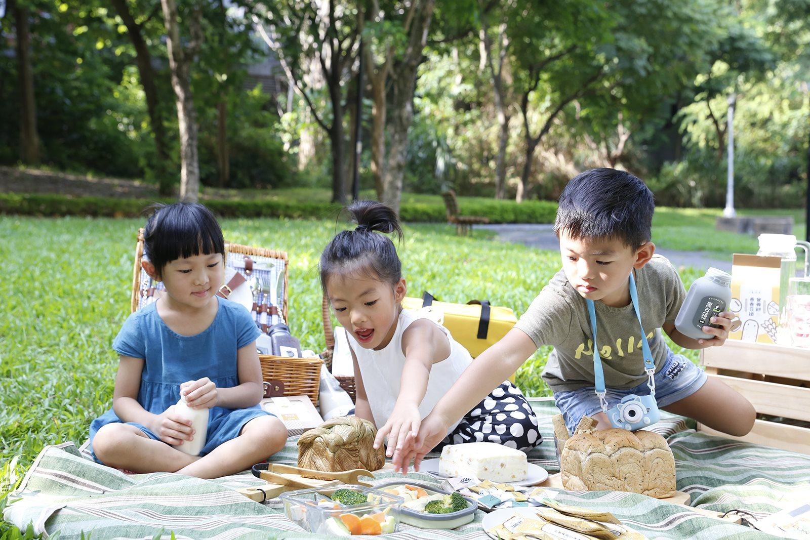 禾乃川野餐便當美味推薦!營養黑豆腐和手工豆干如何入菜